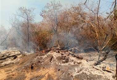 El incendio continúa activo Foto: Abrego P. Leo