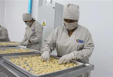 La planta está ubicada en el kilómetro (Km) 11, carretera a Puerto San Francisco