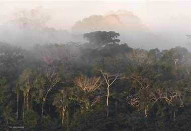 El concurso hace un llamado a la conservación ambiental