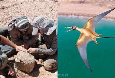 Las alas podían tener hasta dos metros de largo