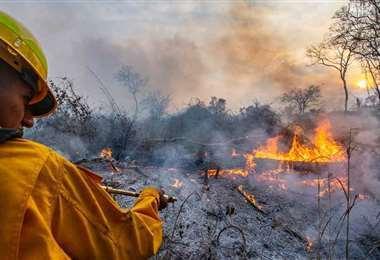 Gobernación envía nuevas brigadas para sofocar incendios ARCHIVO