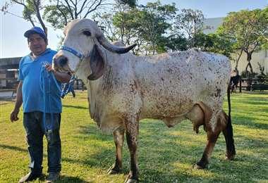 Gran campeona de producción de leche raza Gyr Expocruz 2021