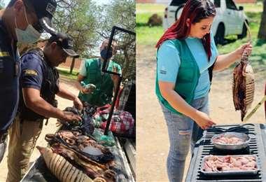 Decomisan carne de monte y huevos de peta/Foto: Gobernación
