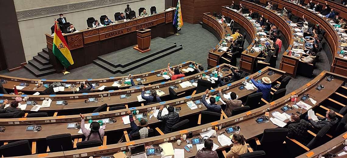 El MAS aprobó en grande el proyecto de Ley/Foto: EL DEBER