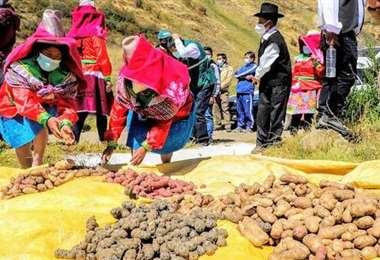 Hay preocupación del lado peruano (Foto. Gestión Economía)