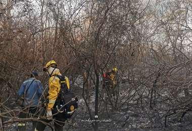 Los bomberos combaten las llamas en distintos frentes